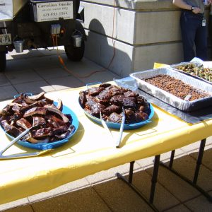 BBQ Catering making the right choice in Caterers